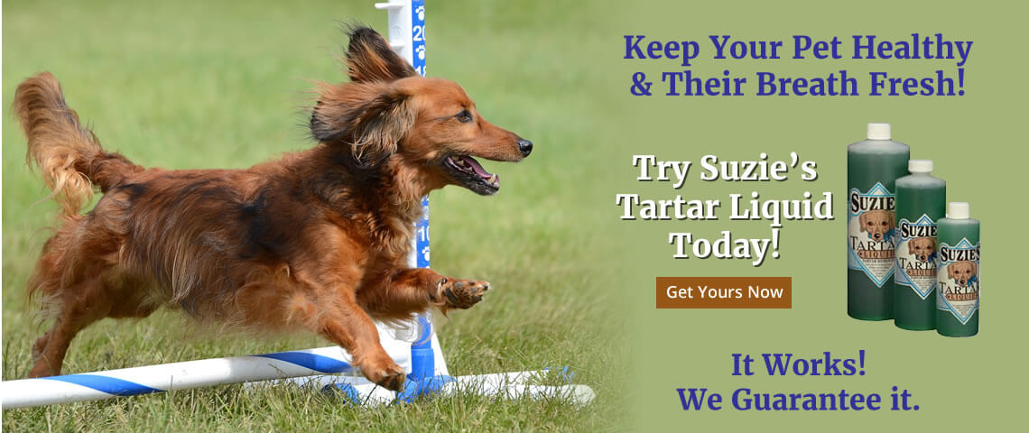 Try Suzies Tartar Liquid Today!